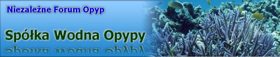 SWO - Spółka Wodna Opypy